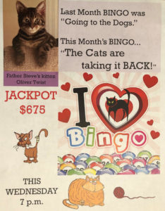 BINGO – The Cats are taking it BACK!